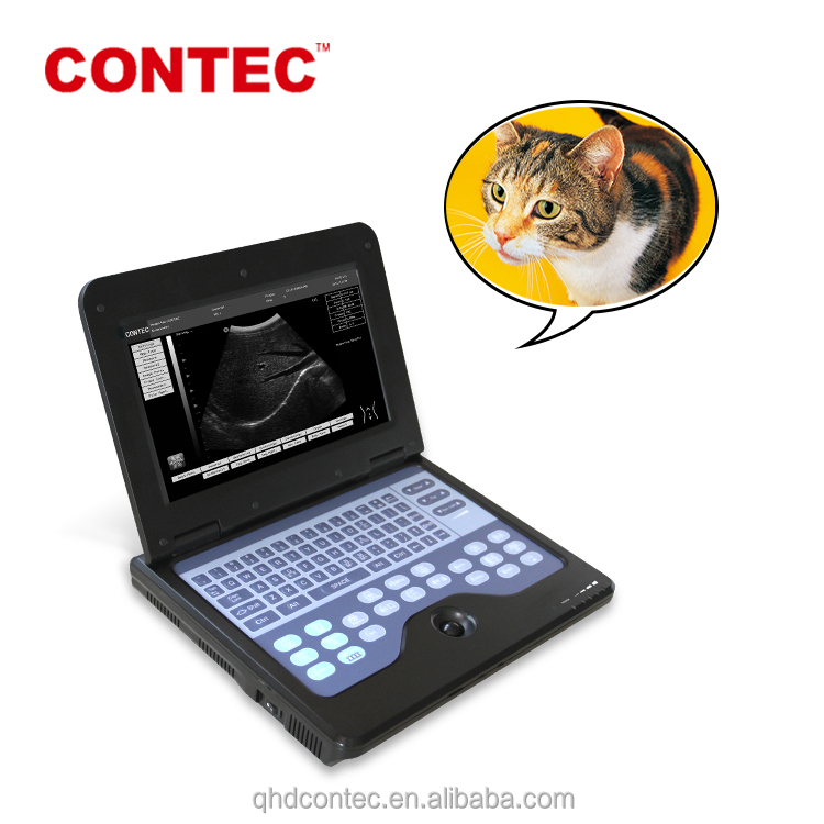 Direct Supply CMS600P2-VET portable veterinary ultrasound equipment