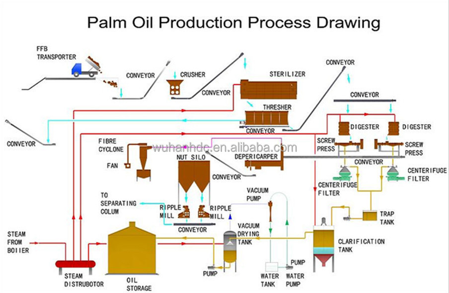 GO IN-DEPTH ON Palm Oil PRICE