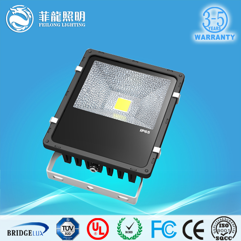 China Manufacturer Cheap 50w LED Floodlight IP65 Cob Chip