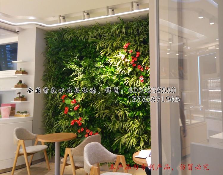Pflanzen Wand Blumentöpfe,Wand Töpfe Soilless Anbau Von Pflanzen ...