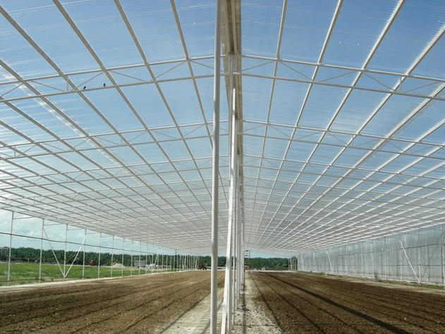Fiberglass Reinforced Plastic Roofing Sheet Frp Transparent Roof Sheet