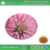 Factory supply Hot Selling Red clover extract 20% biochanin, 98% Biochanin A Powder