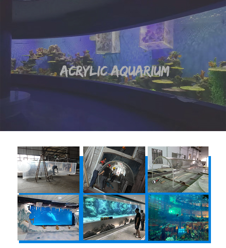 Cheap price various shape aquariumsm made from Acrylic