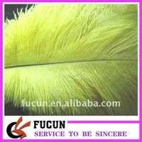 Yellow Ostrich Feather for sale cheap for decoration/ Party supplies