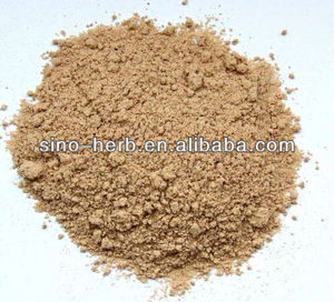 Free Sample Anti-aging Herbs Reishi Lingzhi Extract Herb Extract