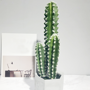 Large Cactus Indoor Plants Artificial