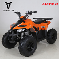 Tao Motor Automatic Mini China Dune Buggy 110cc ATA110-C1 with CE ECE