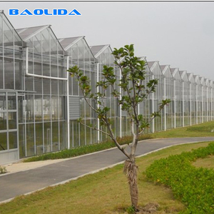 Commercial polycarbonate partial used galvanized steel structure greenhouse