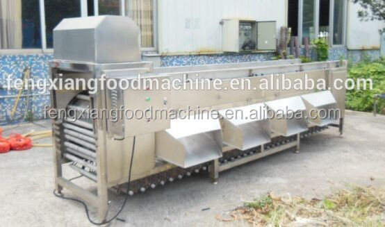 Factory Price High Efficiency Industrial Potato Onion Apple Orange Picking Grading Sorting Machine
