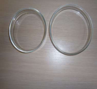 Soda Glass or Borosilicate Glass Petri Dishes