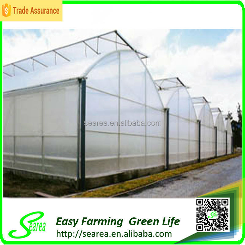 poly greenhouse steel structure