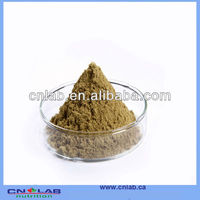 NSF GMP KOSHER 100% Natural Pure Guava Leaf Extract Powder