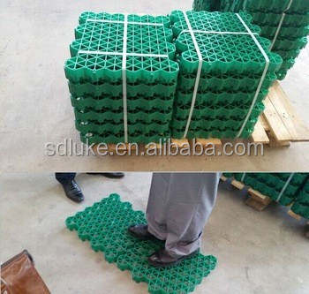 Plastic Grass Paver,Grass Pavers Lowes,China Supplier - Buy Plastic  Driveway Paver,Recycled Plastic Pavers,Interlocking Plastic Paver Product  on
