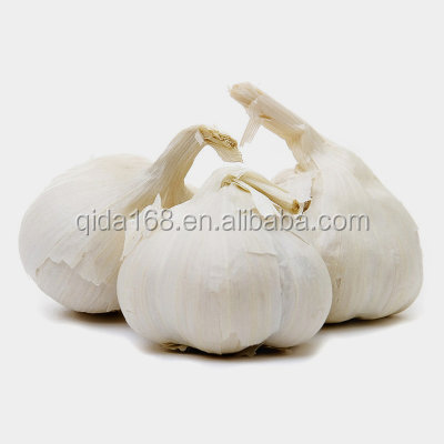 Garlic Type and Liliaceous Vegetabless Product Type fresh white garlic