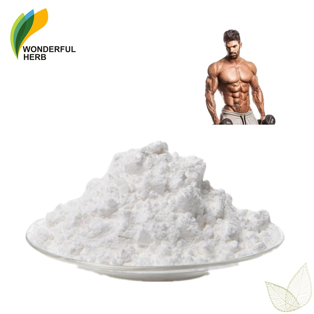 Factory Supply branched amino acid bcaa supplement