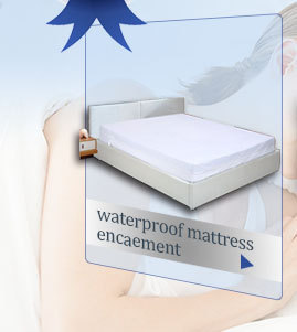 Queen Size SafeRest Premium Waterproof Lab Certified Bed Bug Proof Zippered Mattress Encasement (Fits 6 - 9 in. H)