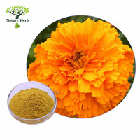 Calendula officinalis extract/ Marigold extract, Lutein: 5%-98% HPLC