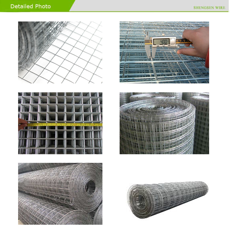 Awesome Galvanized Wire Mesh Rolls Image - Simple Wiring Diagram ...