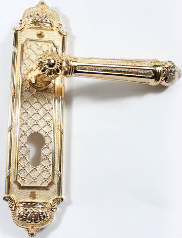 Door Handles Gold - Home Design Ideas and Pictures