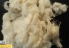 24/26mic Natural Clean White Washed Combed Sheep Wool noils for Blanket Felting