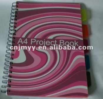 2013 Project Book