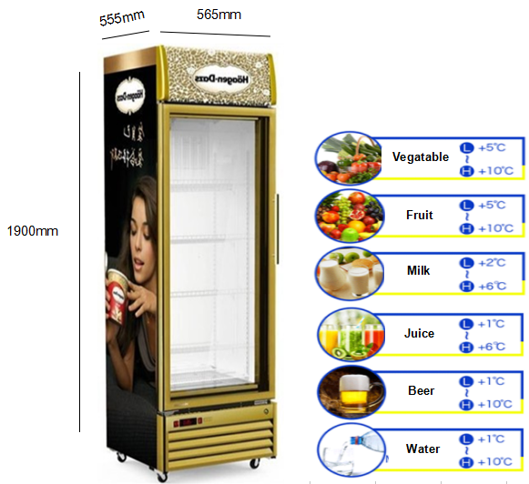 250L Factory Price Commercial Upright Glass Display Refrigerator For Beverage Dairy And Beer