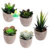 /product-detail/assorted-decorative-faux-succulent-artificial-succulent-cactus-cacti-plants-with-gray-pots-60797558894.html