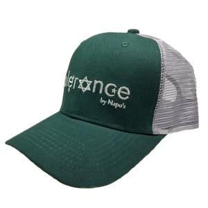 Oem Hats 9c136eaa2365
