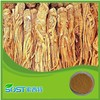 Hot Selling High Quality angelica extract