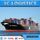 LCL fba freight forwarder shipping from shanghai to usa Amazon DDP DDU