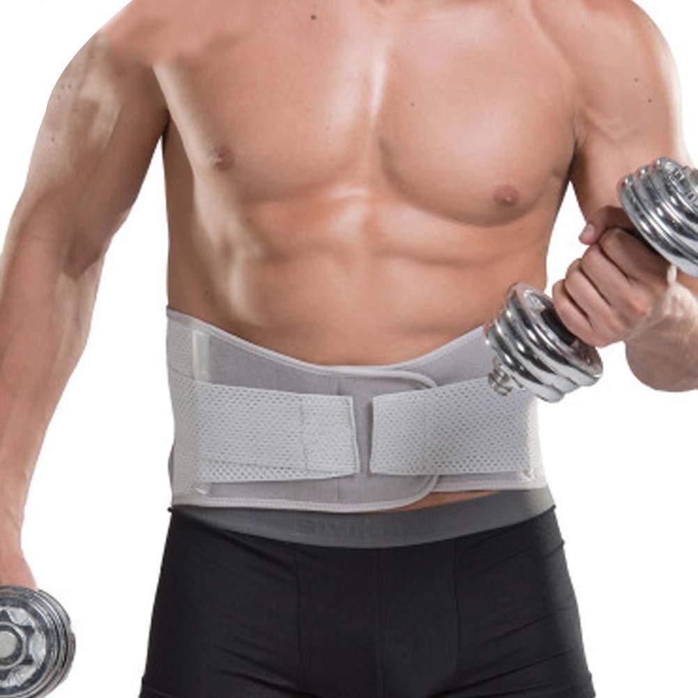 DIBIO Waist Trimmer Waist Trainer Dual Adjustable Straps Belt Stomach Body Wrap & Back Support Weight Loss Sweat Enhancer for Men and Women