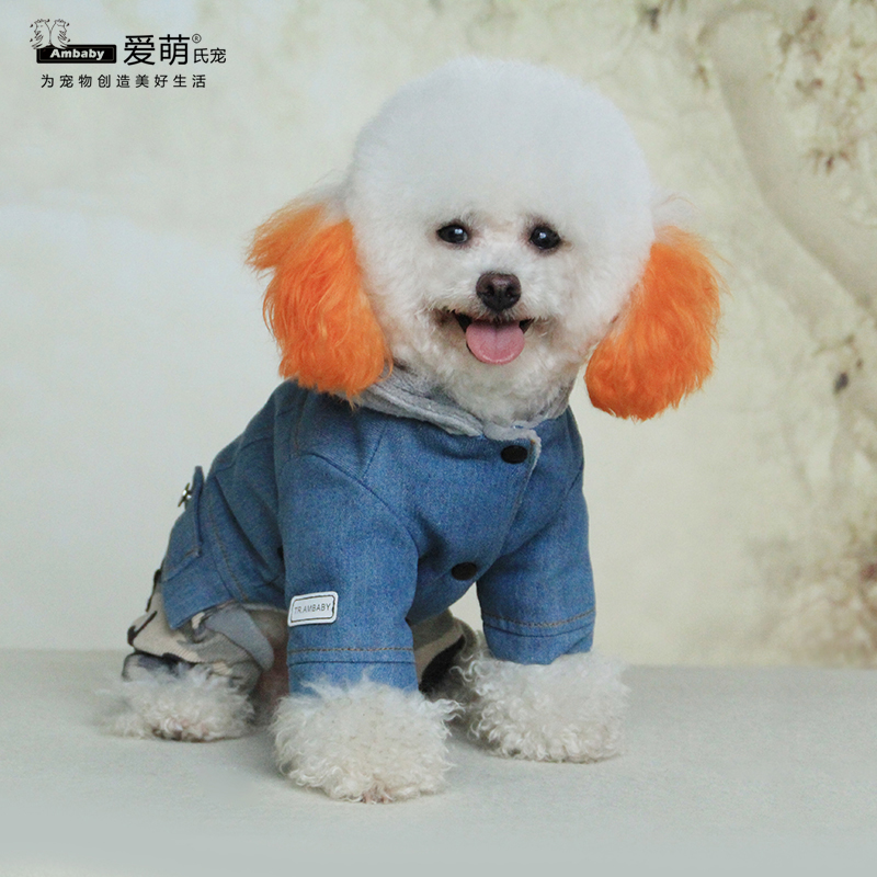 New fashion designer denim dog clothes for small dog with four legs