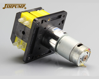 JIHPUMP101K 12V 24V DC Motor Double Pump Head Miniature Peristaltic Pump with BPT Tubing