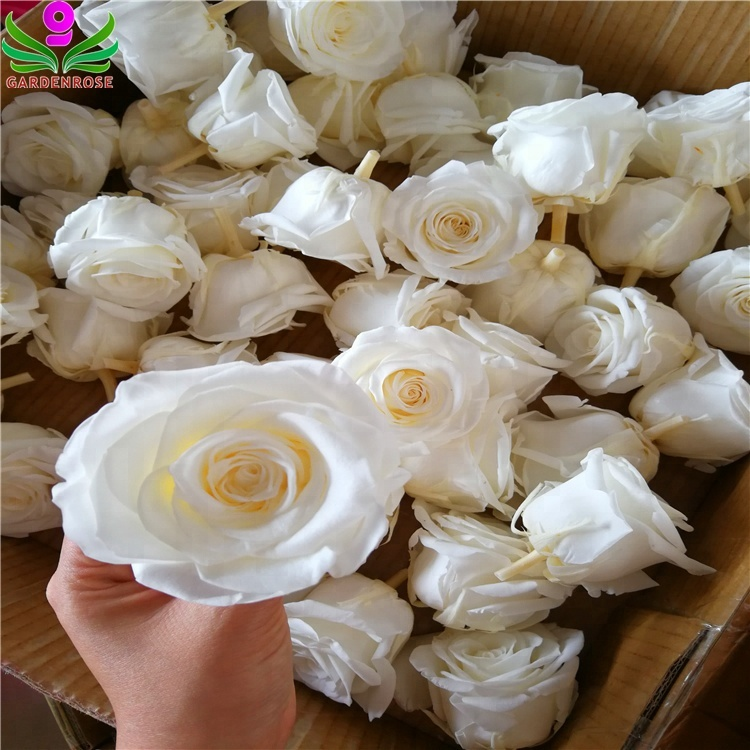 Factory Directly Sale Decorative Flowers Preserved <strong>Roses</strong> 5-6cm <strong>Head</strong> With Best Quality In Kunming