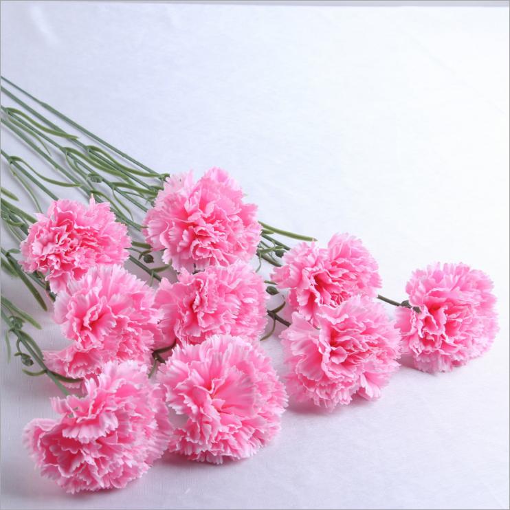 Где можно купить оптом цветы гвоздики