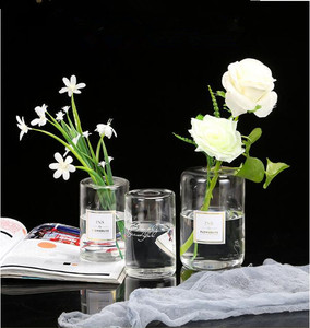 High Borosilicate Small Mouth Glass Vase/Creative Dry Flower Perfume Bottle /Flower Hydroponic Bottle