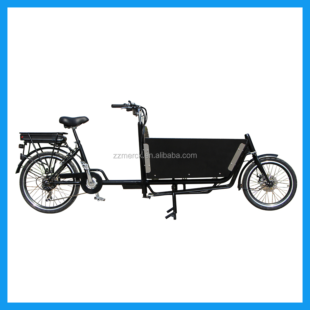 2 Wheels One Adult Large Carrier Electric Cargo Bicycle