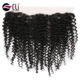 Aliexpress Peruvian Hair Afro Kinky Human Hair For Braiding Alishes Hair