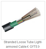 Guangdong Factory Supply 8 12  24 core   MPO MTP  Fiber Optic Patch Cord