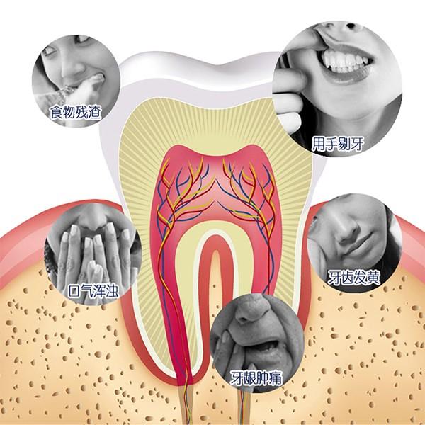 798fe27ab Fábrica de massa de forma Y pegar fio dental Higiene Bucal Produtos do Saco  de Plástico