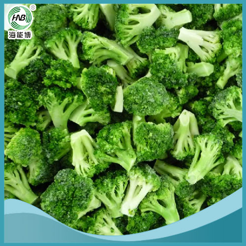 export wholesale high quality Organic Broccoli