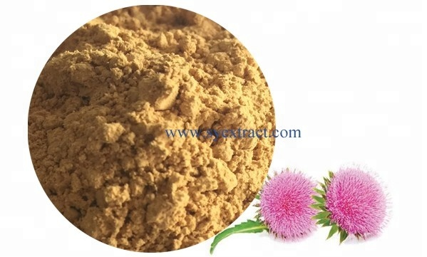 Free Sample Raw Materials 80% Bulk Water Soluble Milk Thistle Extract Pure Price Silymarin Extract Powder