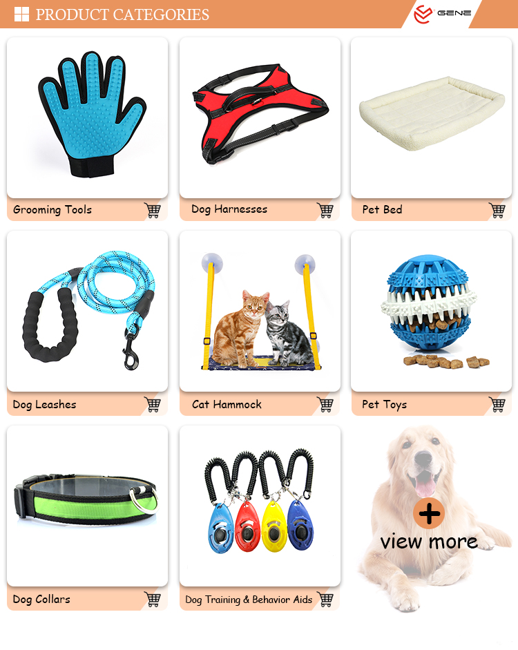 Wholesale Lead Rope Padded Handle For Walks Dog Walking Sublimation Heat Transfer Pet Leash