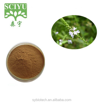 Manufcturer Supply High Quality Verbena officinalis L.extract