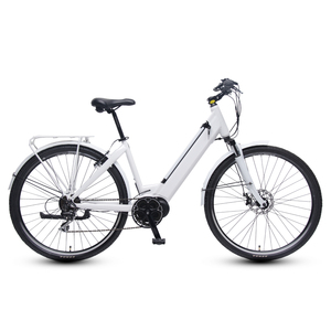 Chinese electric bike with 250W middle motor