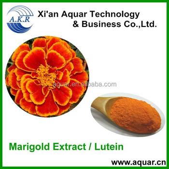 high quality lutein /zeaxanthin marigold marigold extract powder