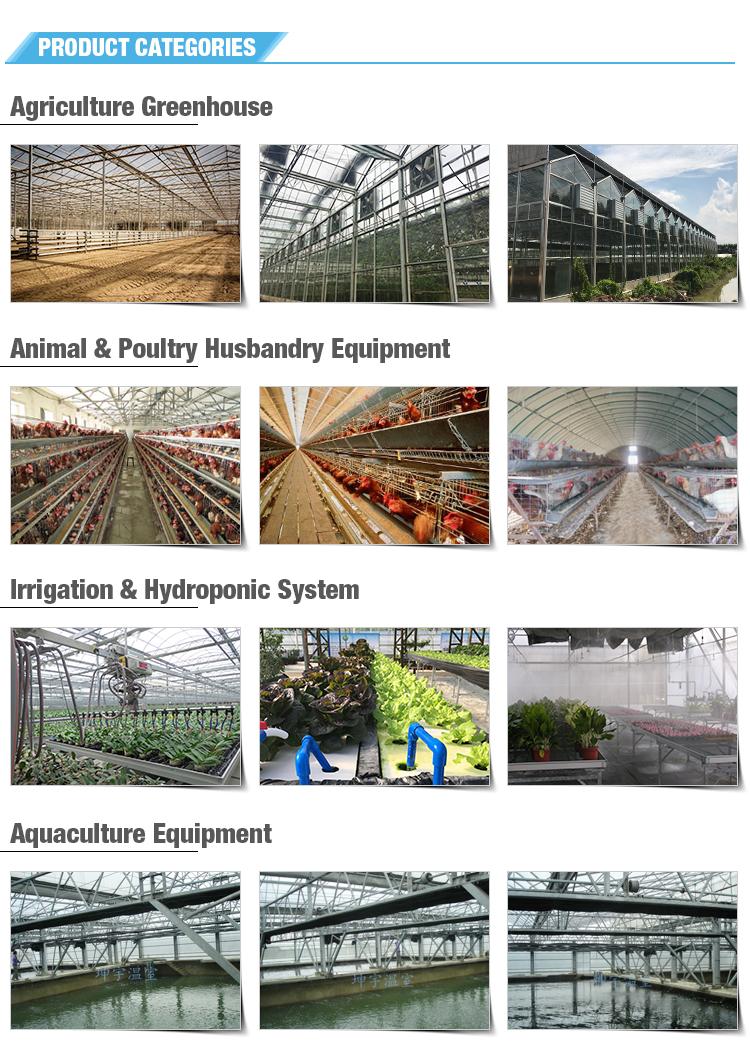 Landwirtschaft glas gewächshaus