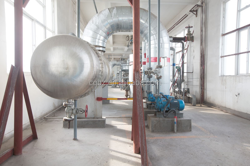 caustic soda manufacturing plant in China