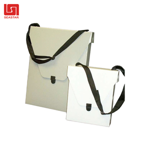 Rectangle Crossbody Bag Shoulder Bags Custom PP Corrygated Box Plastic OEM ODM New Product