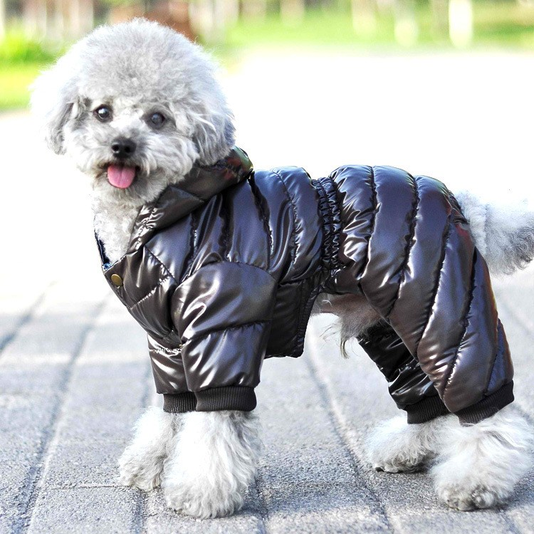 New Style Hot Selling North-face Dog Jacket Dog Coat - Buy North-face Dog  Jacket Dog Coat Product on Alibaba com
